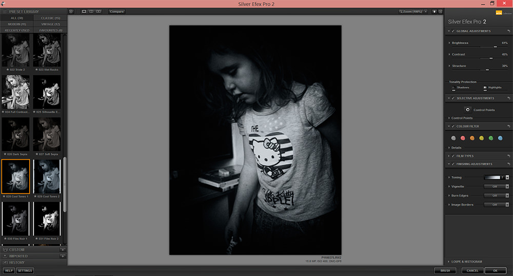 A screenshot of the editing screen of the Silver Efex plugin
