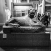 A granite statue of a lion from ancient Egypt, in the British Museum, with visitors walking past.