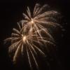 A bright spray of fireworks