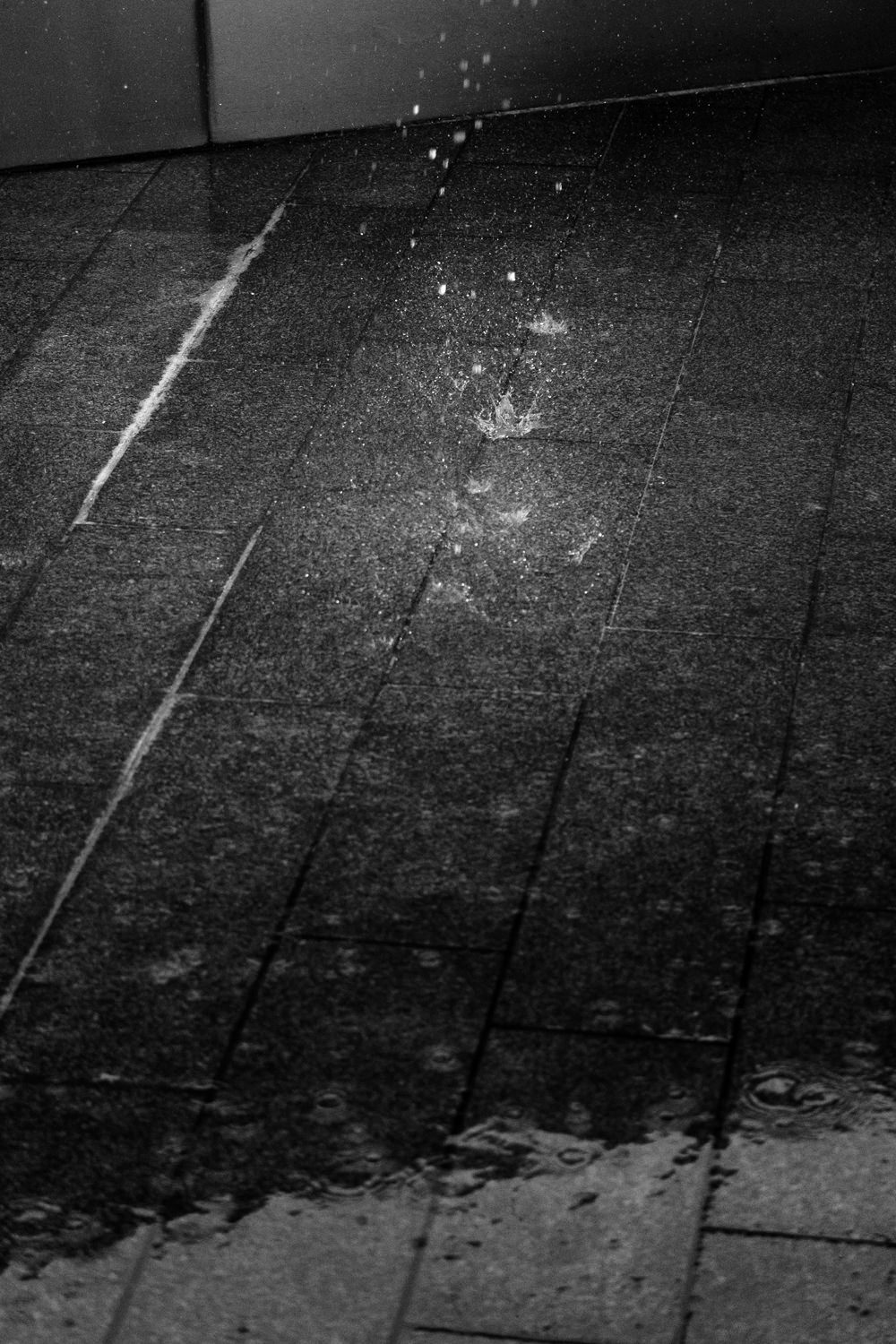 Water droplets falling onto the wet ground. Water's splashing up as the drops hit the ground
