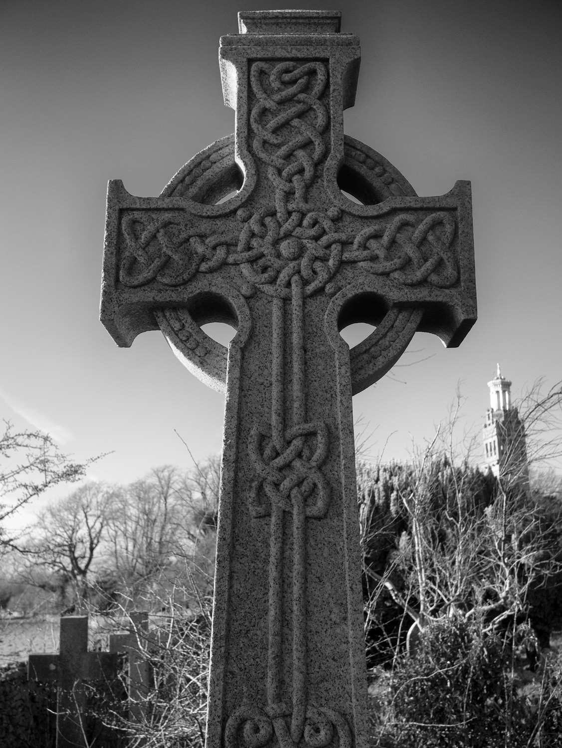 A closeup of the Celtic-style cross. It has a circle around the centre and decorative knots. Beckford's Tower is in the background.