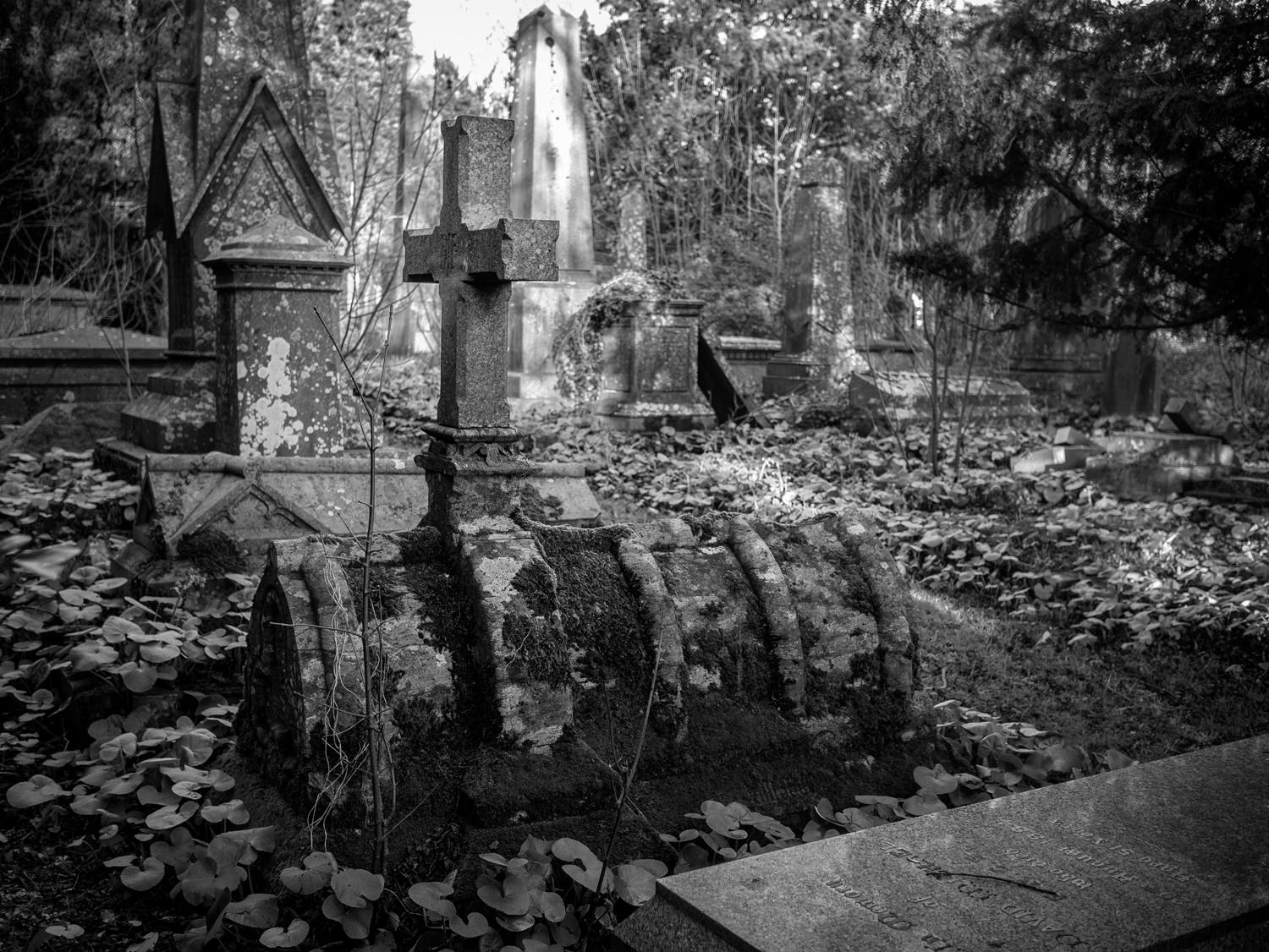 A strange-shaped grave. with a cross on top. The grave is the shape of an arched roof and has moss growing all over it.