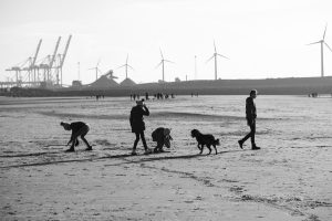 children messing around on a beach