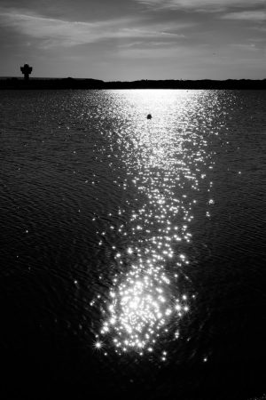 sunlight glinting on the water in lake