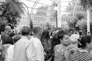 a group of people watching a performance at the sefton palm house