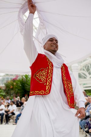 An Egyptian whirling dervish